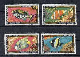 WALLIS E FUTUNA - 1974 - Lotto 4 Francobolli Tematica Pesci - Posta Aerea - Usati - (FDC19741) - Used Stamps