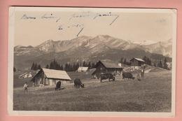 OLD POSTCARD - SWITZERLAND -  SCHWEIZ - SUISSE -      LES PLANS MAYENS - VS Valais