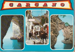 Cartolina - Gargano Pittoresco - Viaggiata 1976 - Italia