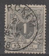 COB N°  43 Oblitération MERCKEM 1893 - 1869-1888 Lion Couché