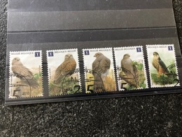 Belgie Andre Buzin Birds FDC USED 4030/34 Ex BL182 RR - 1985-.. Birds (Buzin)