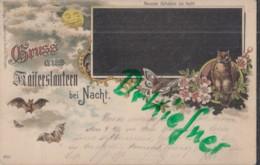 LITHOGRAPHIE: Gruss Aus KAISERSLAUTERN Bei Nacht, Pfalz, Um 1903, Mond, Fledermaus, Eule, Nachtfalter - Kaiserslautern
