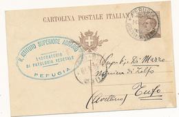 1923 PERUGIA  + R ISTITUTO SUPERIORE AGRARIO LABORATORIO PATOLOGIA VEGETALE - 1900-44 Victor Emmanuel III