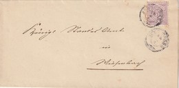 Wuerttemberg / 1885 / Mi. 45 EF Auf Brief K3 SCHROZBERG (AB64) - Wurttemberg