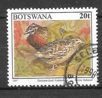 Harlequin Quail. N°779 Chez YT. (Voir Commentaire) - Botswana (1966-...)