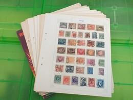 LOT N° E 110  PAYS DE L'EST  Collection Sur Page D'albums Neufs Ou Obl - Stamps