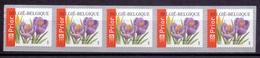 Belgie - 2003 - OBP - **  Rolzegel 107 - Strook Van 5  - Crocus -  Bloemen -  Andre Buzin - Coil Stamps