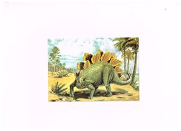 Stegosaurus. - Sonstige