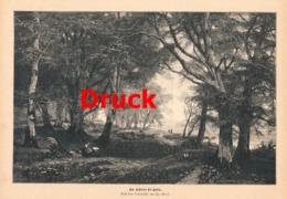 1692 Fr. Ebel Kellersee Eutin Druck Landschaftsbild Druck 1885 !! - Stampe