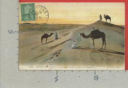 CARTOLINA VG TUNISIA - SCENES ET TIPES - Dunes De Sable Dans Le Desert - 9 X 14 - 1911 TASSATA TAX - Scene & Tipi
