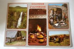SOUVENIR D AUVERGNE MULTIVUES - CASCADE VACHES COSUMES FOLKLORIQUES - Auvergne