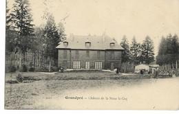 Ardennes BUZANCY Chateau De La Noue Le Coq..  .G - Altri Comuni
