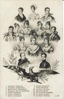 NAPOLEON -FAMILLE IMPERIALE-BONAPARTE - Histoire