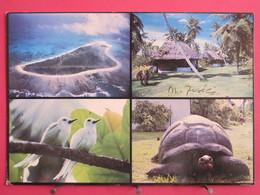 Seychelles - Bird Island - Tortue - Joli Timbre - Recto Verso - Seychelles
