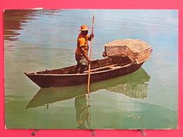 Visuel Très Peu Courant - Seychelles - Fisherman - Pirogue - Fish Trap - Jolis Timbres - Recto Verso - Seychelles