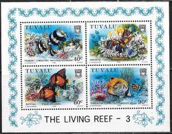 Tuvalu: Specimen, Vita Marina Della Barriera Corallina, Coral Reef Marine Life, Vie Marine Des Récifs Coralliens - Vita Acquatica