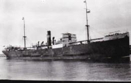 """AM15 Shipping Photograph - Cargo Ship """"City Of Melbourne"""" - Repro's"""