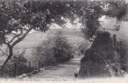AT09 Sandown, Isle Of Wight, Path Leading To Shore - LL Postcard - Sandown