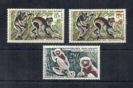 MADAGASCAR - 1961 - Lotto 3 Francobolli Tematica Animali - Lemuri - Nuovi ** - (FDC19762) - Madagascar (1960-...)