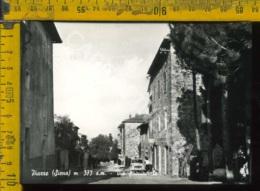 Siena Piazze - Siena