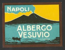 NAPOLI Hotel ALBERGO VESUVIO Luggage Label - 9,5 X 7,5 Cm (see Sales Conditions) - Etiquettes D'hotels