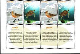 Uruguay 2013 ** 2 Series + Leyenda Explicativa.  Destinos Turisticos. Costa Atlántica. Fauna Marina. - Uruguay