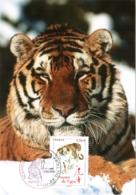Carte Maximum YT 4433 L'année Du Tigre, Horoscope Chinois, 1er Jour 15 01 2010 Paris 75 Parfait état, Nouvel An Chinois - Cartoline Maximum