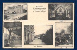 Torgny ( Rouvroy). Pensionnat De Sainte-Chrétienne. ( Soeurs Transférées De Longuyon à Torgny En 1905).Multi-vues. 1912 - Rouvroy
