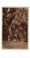 54 - Environs De VAL De CHATILLON - Gros Chêne - Animée  (P151) - Autres Communes
