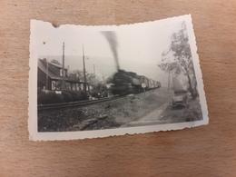 DAMPFLOK IN VOLLER FAHRT - FOTO LOEWEN-DROGERIE - BOEHLITZ-EHRENBERG - Trenes
