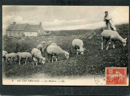 CPA - AU CAP GRIS NEZ - Les Moutons, Animé - France