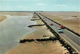 Automobiles - Voitures De Tourisme - Ile De Noirmoutier - Le Passage Du Gois à Marée Basse - Carte Neuve - Voir Scans Re - Voitures De Tourisme