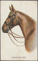 FE Valter - Horse, Never Say Die!, 1921 - Inter-Art Co Postcard - Paarden