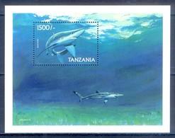 C121- Tanzania Marine Mammals Fish Blue Shark . - Fishes