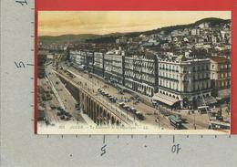 CARTOLINA NV ALGERIA - ALGER - Le Boulevard De La Republique - 9 X 14 - Algeri
