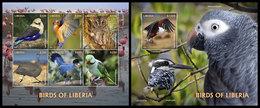 LIBERIA 2020 - Birds Of Liberia, Parrots. M/S + S/S. Official Issue [LIB200107] - Parrots
