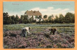Rotenburg I Hann Germany 1908 Postcard Mailed - Rotenburg (Wuemme)