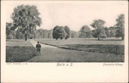 Ansichtskarte Halle (Saale) Peissnitz Wiese 1908 - Allemagne