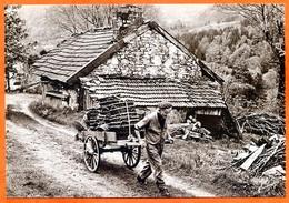 88 Vosges Vieux Metiers Marchand De Paniers 1984 N° 104  Ferme Charrette à Bras Grand Format Carte Vierge TBE  Ste6789 - Autres Communes