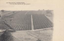 VERMENTON: Le Beaunois Vermenton - Côte Des Marmignats (J. Bise, Prop.) - Vermenton