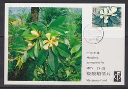 MAGNOLIA   MAGNOLIE Flower Blume Fleur Manglietia Patugensis - CHINA CHINE 1986 Mi 2087 Maximum Card - Pflanzen Und Botanik
