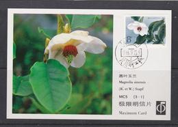 MAGNOLIA   MAGNOLIE Flower Blume Fleur Magnolia Sinensis - CHINA CHINE 1986 Mi 2086 Maximum Card - Pflanzen Und Botanik