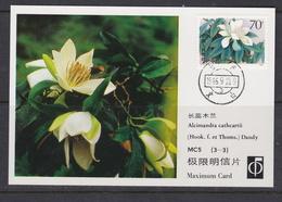 MAGNOLIA   MAGNOLIE Flower Blume Fleur Alcimandra Cathcarti - CHINA CHINE 1988 Mi 2086 Maximum Card - Pflanzen Und Botanik
