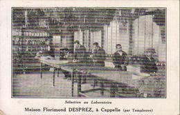 D59   Maison Florimond DESPREZ à CAPPELLE ( Par Templeuve )  ......... Sélection Au Laboratoire ... Timbre Perforé F.D - Autres Communes