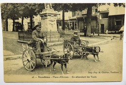 C. P. A. : 41 VENDOME : Deux Voitures à Chien : Place D'Armes, En Attendant Les Taxis - Vendome