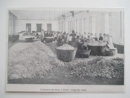 Année 1902 - GRASSE - Triage Des Roses - Ancienne Coupure De Presse (Original French Press Cutting) - Documents Historiques