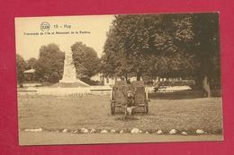 C.P. Huy  =  Promenade  De Île Et  Monument  De La Victoire  1914-1918 - Huy