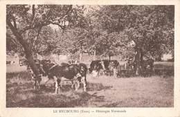 27 Le Neubourg Paturages Normands Paturage Vache Laitiere Vaches - Le Neubourg
