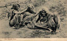 INDIA // INDE. THE GUZART HUNT - India