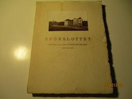 1927 SWEDEN SPÖKSLOTTET PALACE , HISTORY AND ARCHITECTURE  0 - Bücher, Zeitschriften, Comics